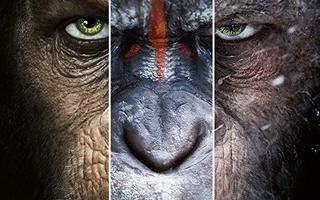 Planet of the Apes Trilogy 4K UHD + Blu-ray