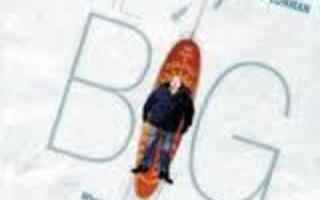 The Big White ( Robin Williams ) dvd 104454