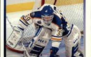 1993-94 Upper Deck #387 Dominik Hasek
