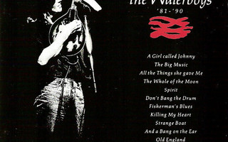 THE WATERBOYS : The best of The Waterboys '81-'90
