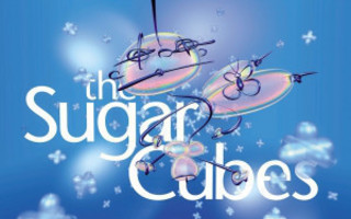 THE SUGARCUBES: The Great Crossover Potential - A Collect CD
